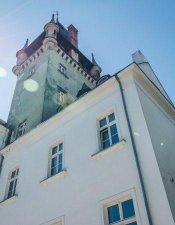 Schloss Röhrsdorf / Pałac Osowa Sień